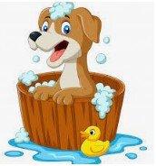 Icon for Dog shampoos