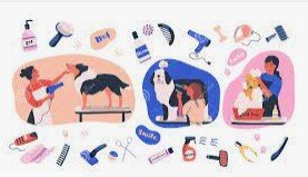 dog grooming products Oxfordshire